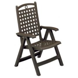 Lot de 2 fauteuil à dossier réglable style fer forgé
